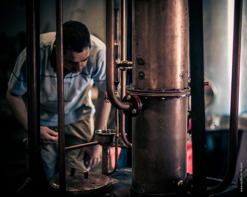 Visite guidée distillerie